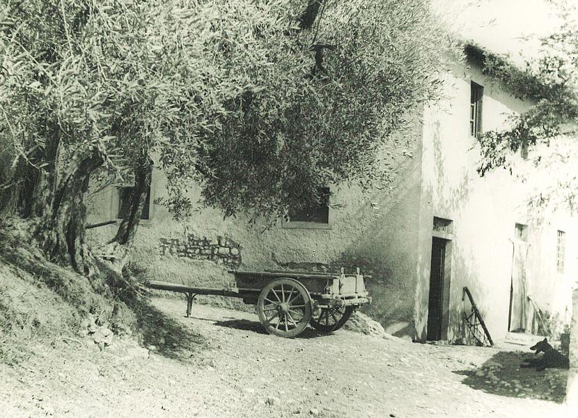 Villa S.Andrea